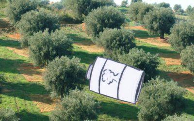 Land Art virtuale all'Istituto agrario